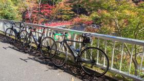 自転車同好会 11月度 第20回鈴鹿8時間エンデューロ & 香嵐渓ツーリング4